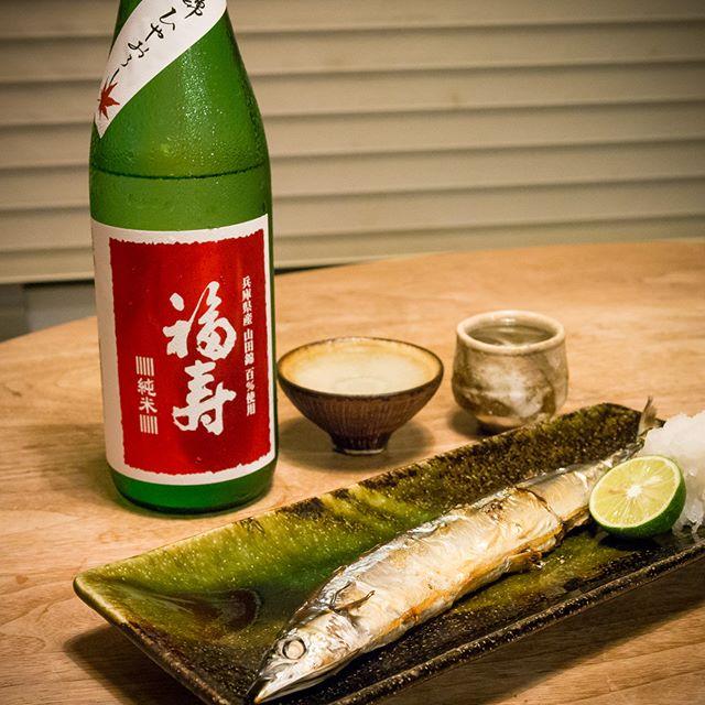 秋刀魚とひやおろしが秋を連れ来ました[福寿 山田錦純米酒 ひやおろし]↑酒心館ではいろいろ試飲したけど、結局コレに-----#秋刀魚 #さんま #塩焼き #焼き魚 #grilledfish #日本酒 #Japanesesake #純米酒 #junmai #福寿 #fukuju #神戸酒心館 #kobe #shushinkan #丹波立杭焼 #TambaTachikui #家飲み #晩ごはん #dinner #晩酌 #おうちごはん #秋 #Autumn #instadrink #instafood #OLYMPUS #OMD #EM5 #LEICA DG SUMMILUX 25/F1.4
