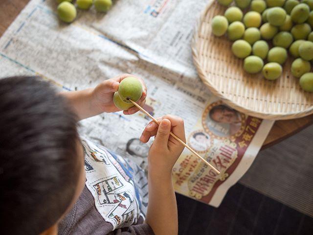 息子もお手伝い。  #梅味噌 #梅仕事 #梅 #青梅 #おうちごはん  #デリスタグラマー #beautifulcuisines #クッキングラム  #テーブルフォト #料理好きな人と繋がりたい