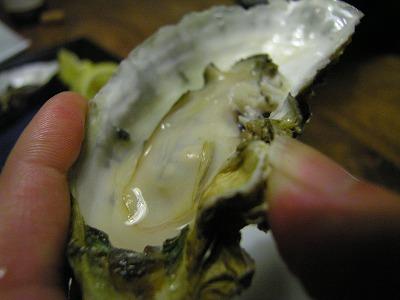 レンチン♪牡蠣